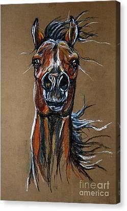 Wild Horses Canvas Print - Wild At Heart by Angel  Tarantella