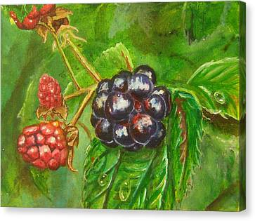 Wild Blackberries Canvas Print