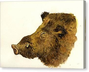 Wild Boar Head Study Canvas Print by Juan  Bosco