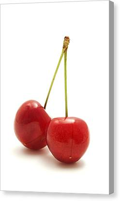 Wild Cherry Canvas Print by Fabrizio Troiani