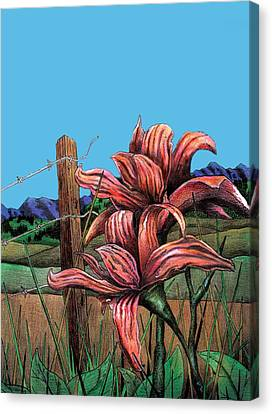 Barbed Wire Fences Canvas Print - Wild Day Lily by Brian Murphy