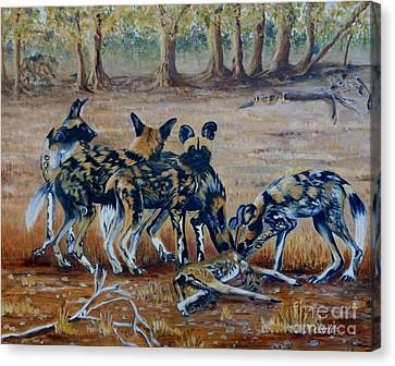 Wild Dogs After The Chase Canvas Print by Caroline Street