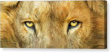 Wild Eyes - Lion Canvas Print by Carol Cavalaris