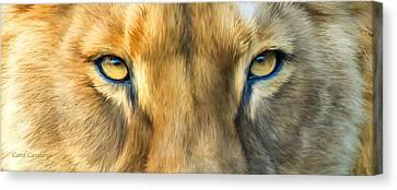 Lioness Canvas Print - Wild Eyes - Lioness by Carol Cavalaris