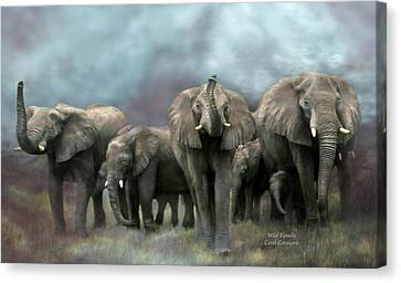Wild Family Canvas Print by Carol Cavalaris