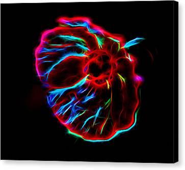 Wild Flower Glow 2 Canvas Print by Yury Malkov