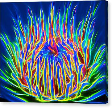 Wild Flower Glow Canvas Print by Yury Malkov
