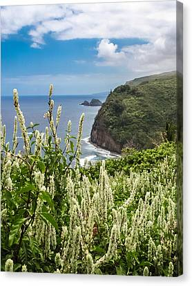 Wild Flowers At Pololu Canvas Print