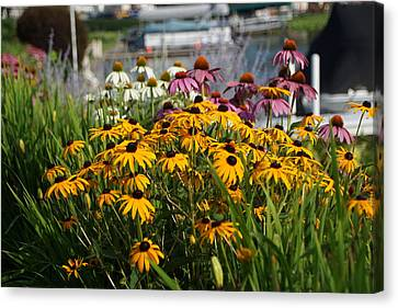 Wild Flowers By The Lake Canvas Print by Thomas Fouch