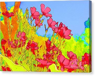 Wild Flowers In Bloom Canvas Print by Julie Lueders