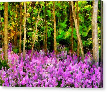 Floral Canvas Print - Wild Forest Violets by Georgiana Romanovna