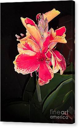 Wild Gladiolas Red Canvas Print