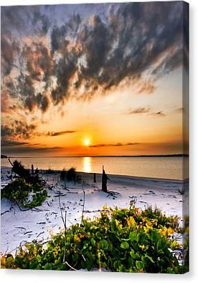 Wild Grape Sunset Orange Sun Beach White Sand Landscape Art Canvas Print by Eszra