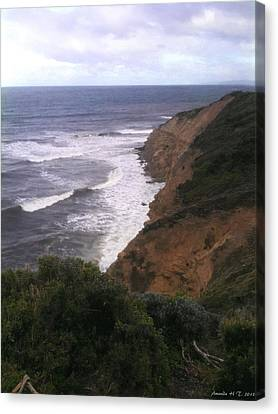 Wild Headland Canvas Print by Amanda Holmes Tzafrir