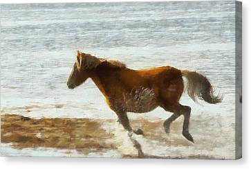 Wild Horse Running Through Water Canvas Print by Dan Sproul