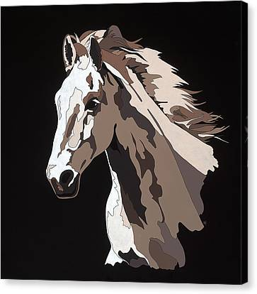 Wild Horse With Hidden Pictures Canvas Print by Konni Jensen