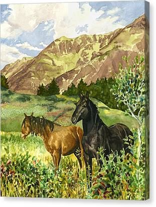Wild Horses Canvas Print by Anne Gifford