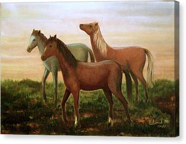 Canvas Print featuring the painting Wild Horses At Sunset by Laila Awad Jamaleldin