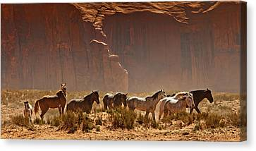 Wild Horses In The Desert Canvas Print