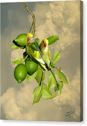 Lime Tree Canvas Print - Wild Lovebirds Of Florida by IM Spadecaller