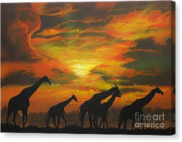 Wild Canvas Print by Mark Henry