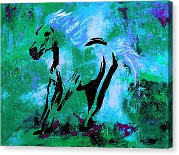 Wild Midnight Canvas Print by Nan Bilden