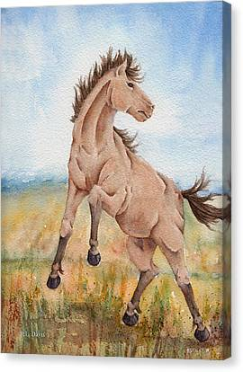 Canvas Print featuring the painting Wild Mustang With Attitude by Rebecca Davis