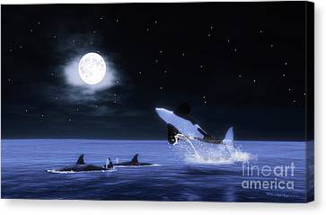 Wild Orcas Canvas Print by Methune Hively