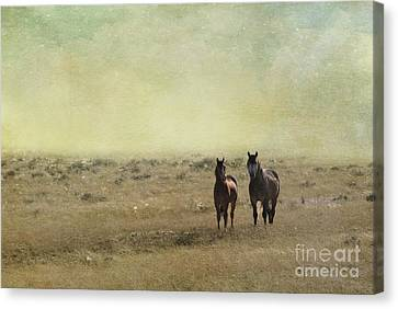 The Horse Canvas Print - Wild Pair by Juli Scalzi