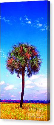 Wild Palm 1 Canvas Print