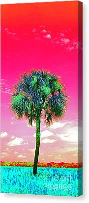 Wild Palm 2 Canvas Print