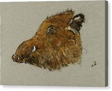 Wild Pig Canvas Print by Juan  Bosco