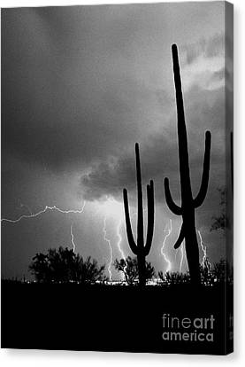 Canvas Print featuring the photograph Wild Places by J L Woody Wooden