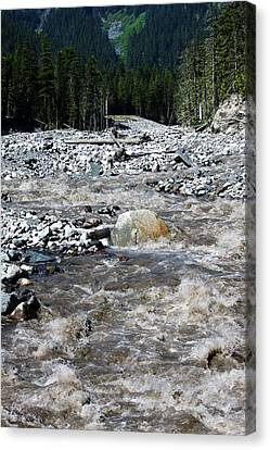 Wild River Canvas Print