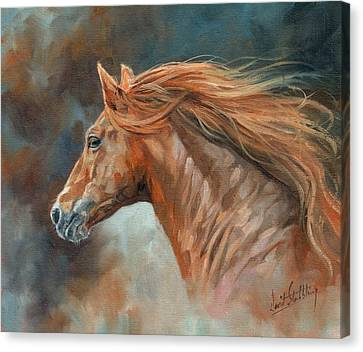 Wild Stallion Canvas Print by David Stribbling