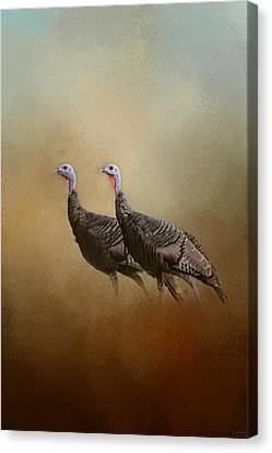 Wild Turkey At Shiloh Canvas Print by Jai Johnson