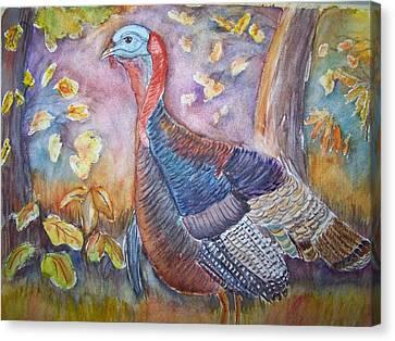 Wild Turkey In The Brush Canvas Print by Belinda Lawson