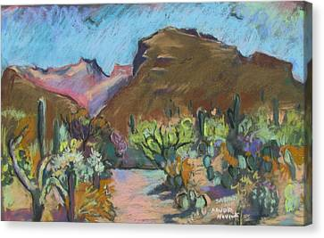 Canvas Print featuring the painting Wild Tuscon by Linda Novick