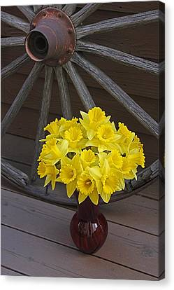 Canvas Print featuring the photograph Wild West Daffodils by Diane Alexander