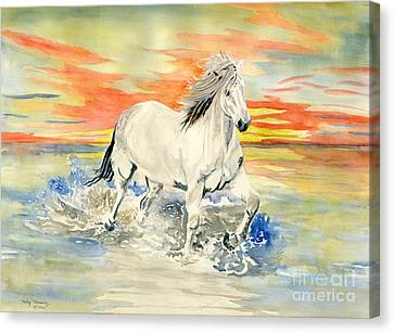 Wild White Horse Canvas Print by Melly Terpening
