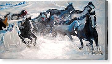 Wild Wild Horses Canvas Print