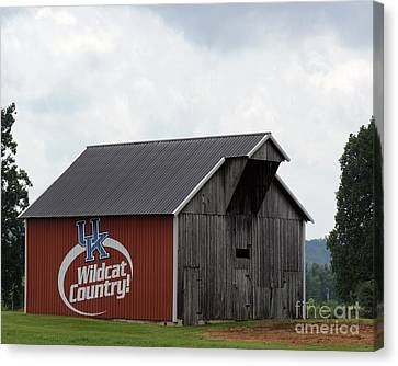 Kentucky Wildcats Canvas Print - Wildcat Country Barn by Roger Potts