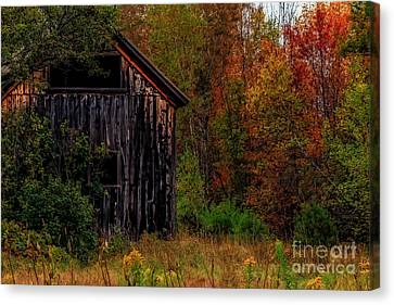 Wilderness Barn Canvas Print by Brenda Giasson