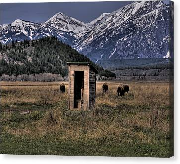 Wilderness Outhouse Canvas Print by CR  Courson