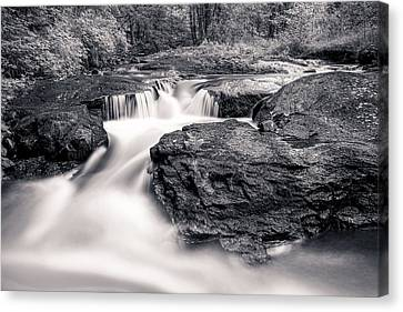 Wilderness River Canvas Print by Ari Salmela
