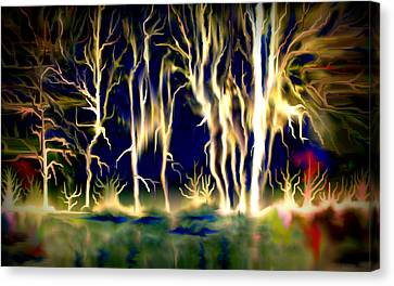 Wildfire Canvas Print by Karunita Kapoor