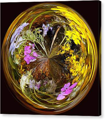 Canvas Print featuring the photograph Wildflower Paperweight by Gary Holmes