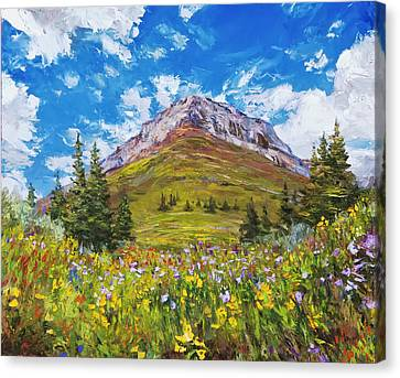 Wildflower Summer Canvas Print by Steven Boone