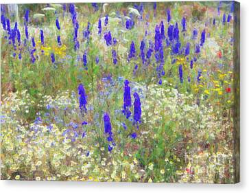 Wildflower Watercolour Canvas Print by Tim Gainey
