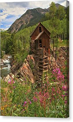 Wildflowers Along The Crystal Canvas Print